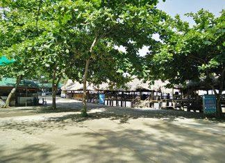 Sân gần biển Vinh Sơn