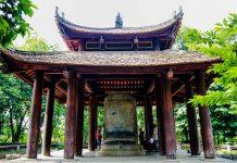 Cây ổi cười tại khu di tích Lam Kinh