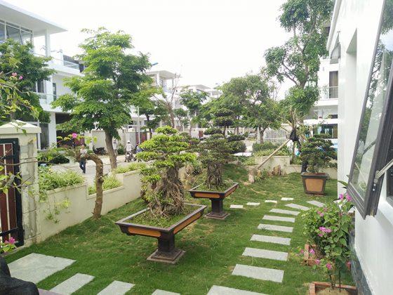 Sân vườn của Villa