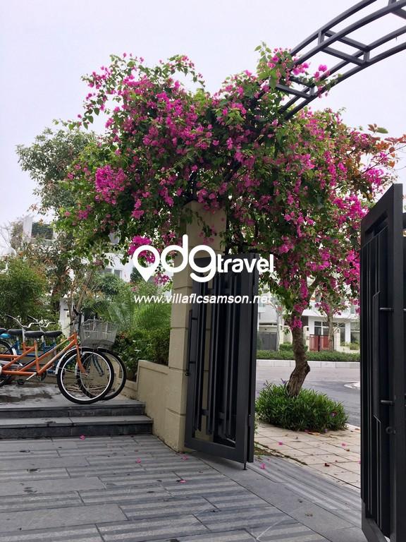 Khuyến mãi Villa FLC Sầm Sơn